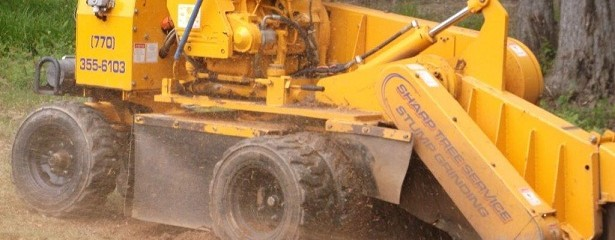 stump grinding services, stump grinder in action