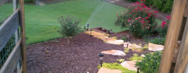 After Shot of Finished Yard