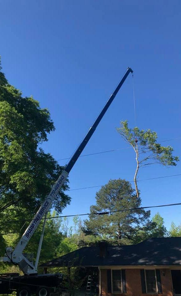 Sharp Tree Service Crane